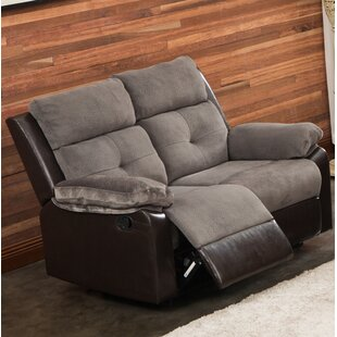 Best Reviews Tanna Reclining Loveseat by Red Barrel Studio Reviews (2019) & Buyer's Guide