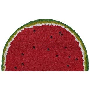 Brookstone Watermelon Red Indoor/Outdoor Area Rug