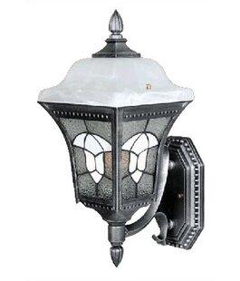 Abington 1-Light Outdoor Sconce