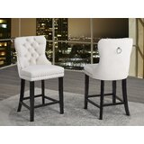 Schoonover 26 Counter Stool (Set of 2) by Darby Home Co