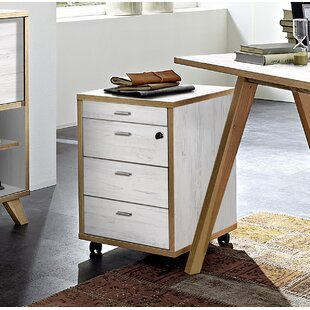 Steffey 4 Drawer Filing Cabinet By Norden Home