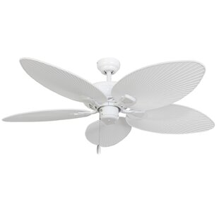 Best Reviews 52 Pavel 5-Blade Indoor Ceiling Fan with Remote By Beachcrest Home