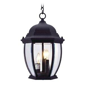 Beth 3-Light Outdoor Hanging Lantern