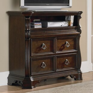 Inexpensive Kate TV Stand for TVs up to 43 by Astoria Grand Reviews (2019) & Buyer's Guide