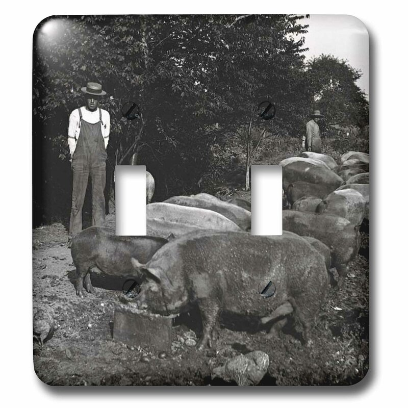 3dRose lsp/_16062/_2 Vintage Pig Farmer Grayscale Toggle Switch