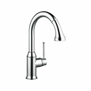 Hansgrohe Talis C Single Handle Kitchen Faucet