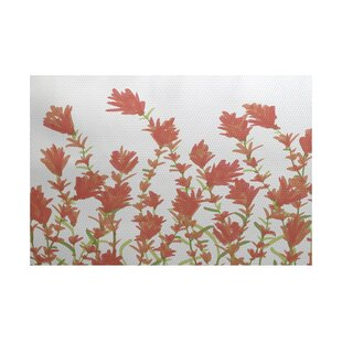 Orchard Lane Coral Indoor/Outdoor Area Rug