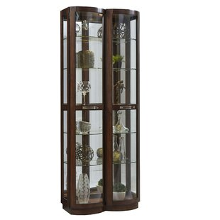 Red Barrel Studio Byrnes Pacific Lighted Curio Cabinet