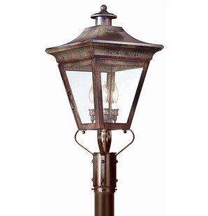 Theodore 3-Light Incandescent 60W Lantern Head by Darby Home Co