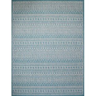 Starr Turquoise Indoor/Outdoor Area Rug