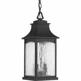 De Witt 2-Light Outdoor Hanging Lantern