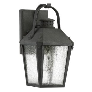 Ellenburg 1-Light Outdoor Wall Lantern by Darby Home Co