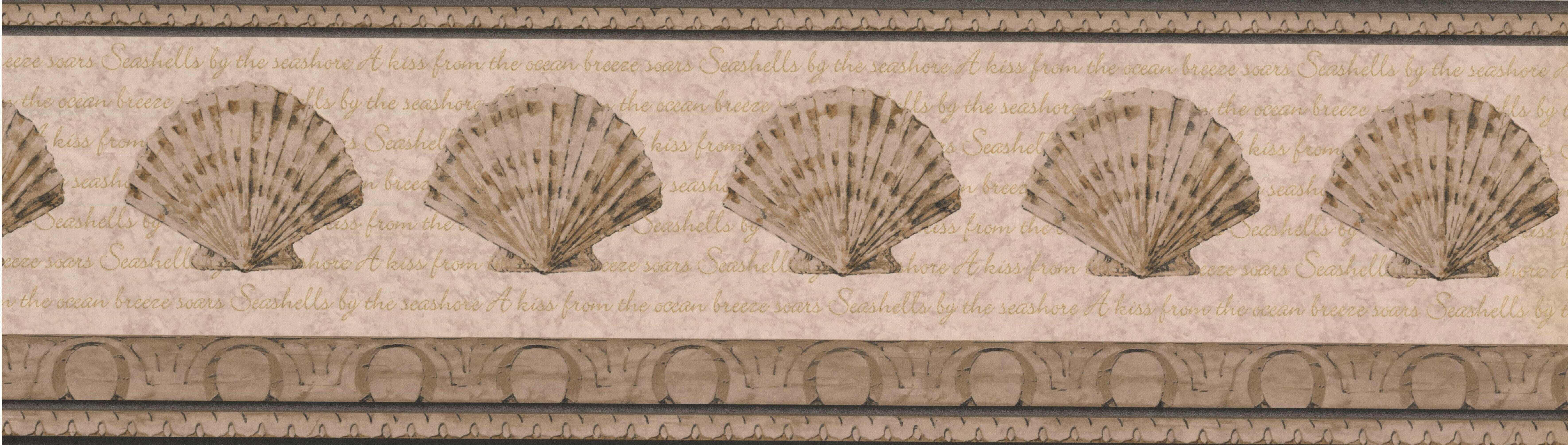 Wallpaper Borders Sea Shells In Frames With Conch Shells And
