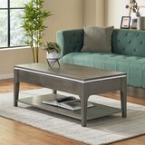 Lift Top Coffee Table with Storage by Latitude Run®