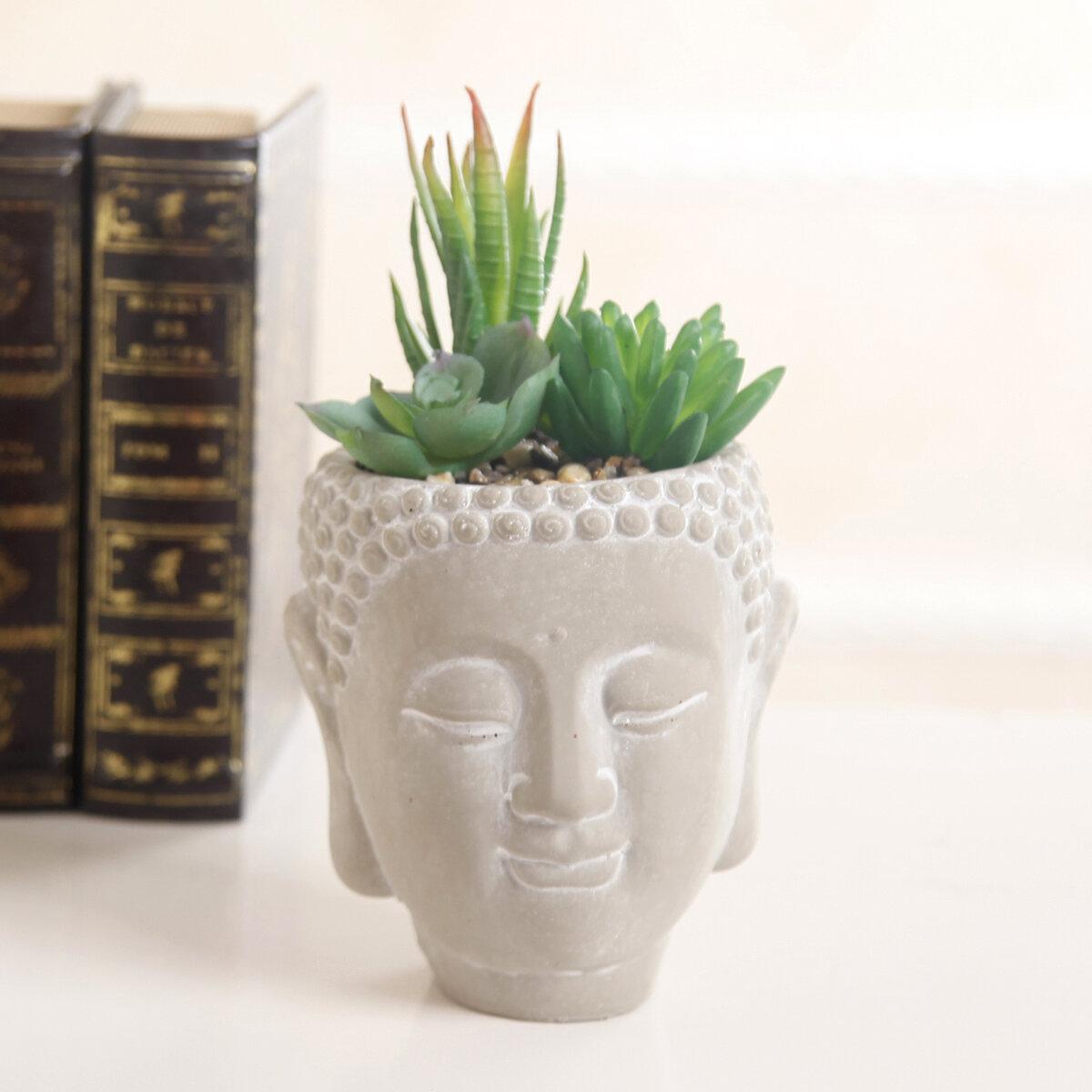 World Menagerie Mix Desktop Succulent In Cement Budda Pot Reviews Wayfair