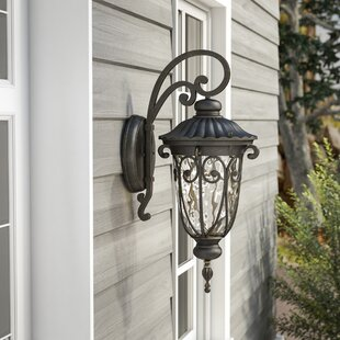 Massey 1-Light Outdoor Wall Lantern By Astoria Grand Outdoor Lighting