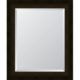 Melissa Van Hise Sumatra Scoop Resin Frame Wall Mirror