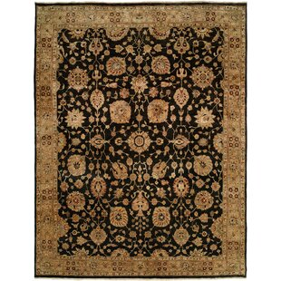 Eshan Hand Knotted Wool Black/Beige Area Rug by Darby Home Co