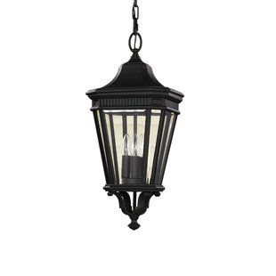 Darby Home Co Chesterhill 3-Light Outdoor Hanging Lantern
