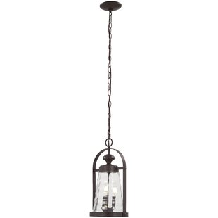 Where buy  Elwell 3-Light Outdoor Hanging Lantern By August Grove