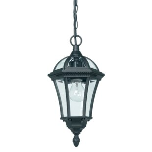 Review Noelle 1 Light Outdoor Hanging Lantern