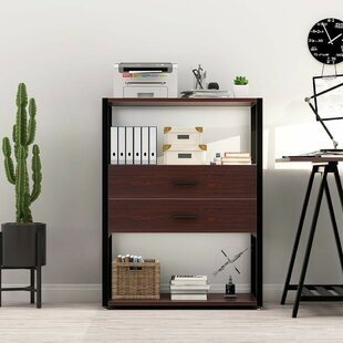 Ebern Designs Scottsburg 2-Drawer Vertica..