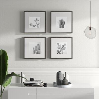 Mercury Row Cacti Types Quadriptych 4 Piece Framed Graphic