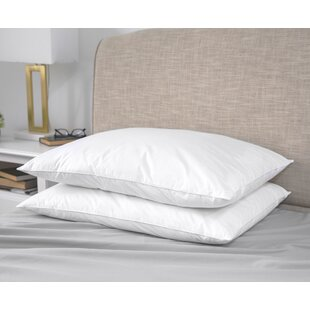 Archibald Soft Down and Feather Standard Pillow (Set of 2)
