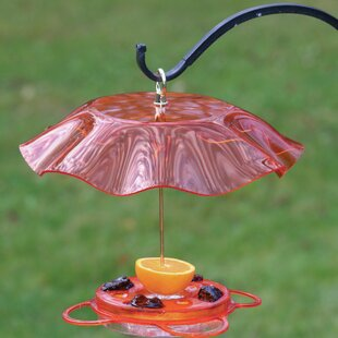 Birds Choice Translucent Oriole Tray Bird Feeder