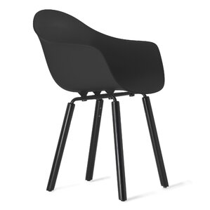 TA Solid Wood Dining Chair by TOOU