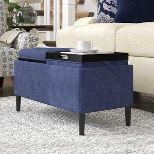 Magnificent Garonzik Storage Ottoman Ncnpc Chair Design For Home Ncnpcorg