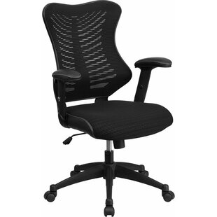 Dunson Ergonomic Mesh Task Chair