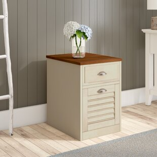 Bridgeview 2 Drawer Mobile File Cabinet by Beachcrest Home Best Design