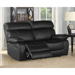 Michela Reclining Loveseat