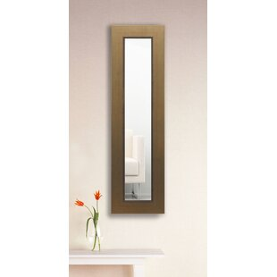 Great choice Doylestown Panel Accent Mirror By Darby Home Co