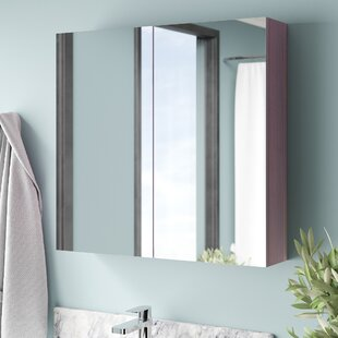 Kempton 63cm X 60cm Surface Mount Mirror Cabinet By Metro Lane