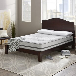 Wayfair Sleep™ Wayfair Sleep 12