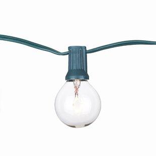 Aspen Brands Globe String Lights