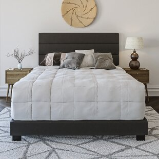 Juana Upholstered Platform Bed