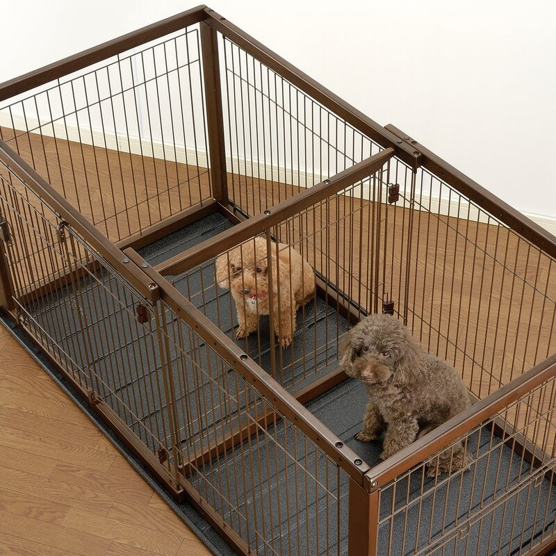 Richell Expandable Pet Crate Divider | Wayfair.ca