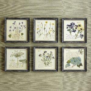 Pressed Flowers Framed Print (Set of 6)