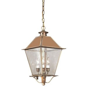 Shopping for Theodore 3-Light Outdoor Hanging Lantern By Darby Home Co