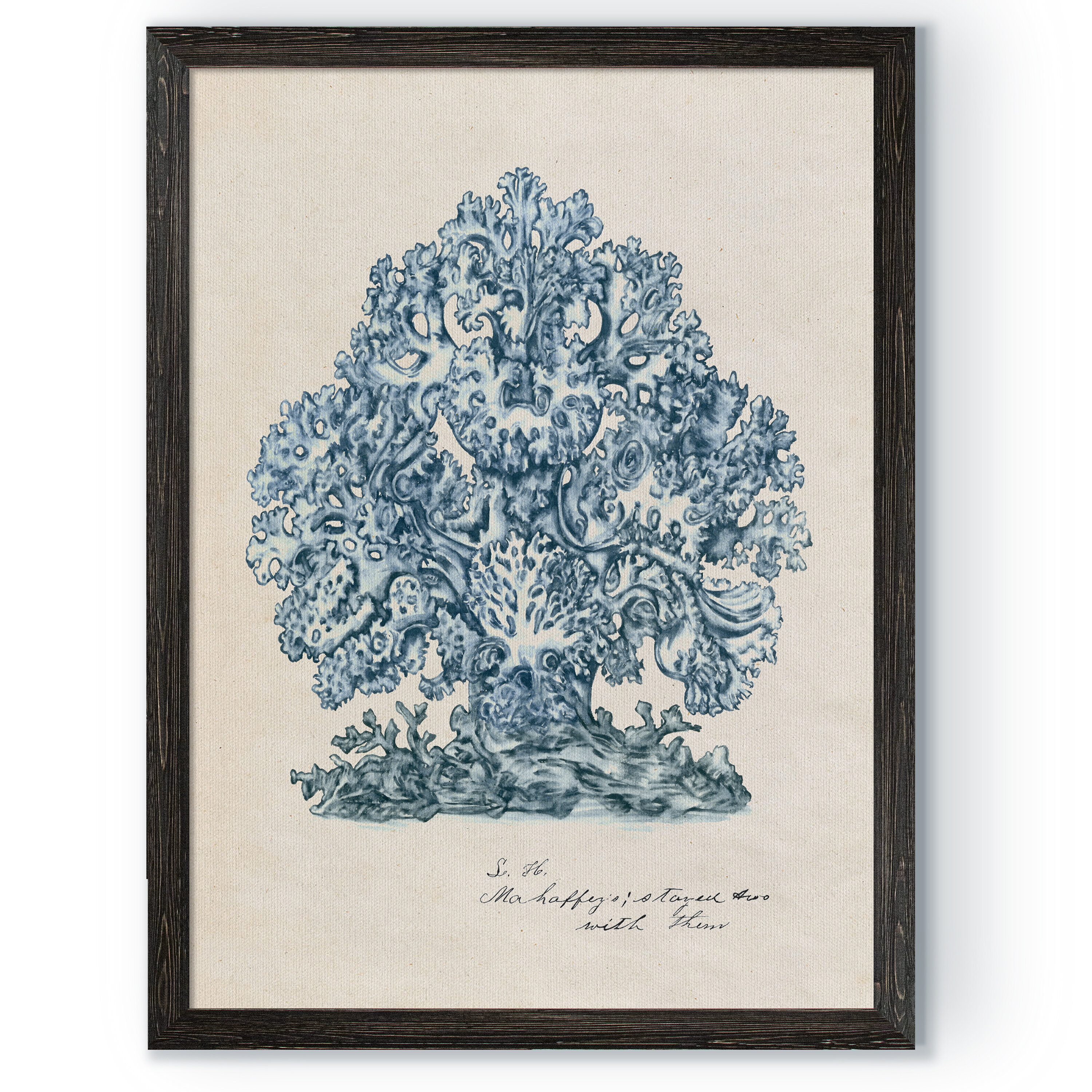 Highland Dunes Sea Coral Study Ii By Paul Cezanne Picture Frame Painting Print On Canvas Wayfair