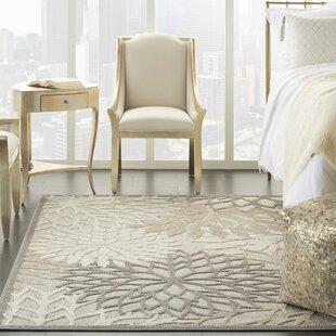 Weon Contemporary Flatweave Gray/Beige Indoor/Outdoor Area Rug