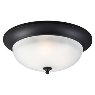 Winston Porter Herzog 3-Light Outdoor Flush Mount