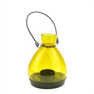 Northlight Seasonal Glass Lantern
