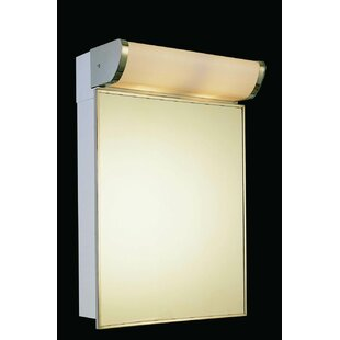 Levon Stainless Steel Mirror 23.25 x 16 Surface Mount Frameless Medicine Cabinet with 2 Adjustable Shelves and LED Lighting BySymple Stuff