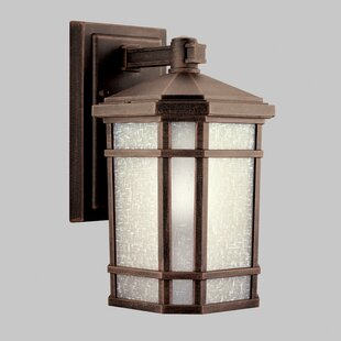 Savings Robles 1-Light Outdoor Wall Lantern By Loon Peak