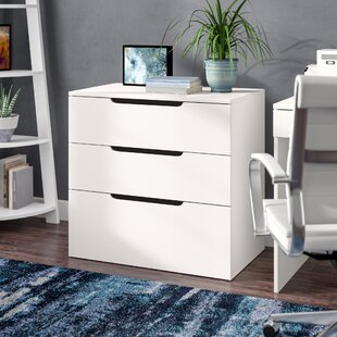 Latitude Run Kurtis 3-Drawer Lateral File