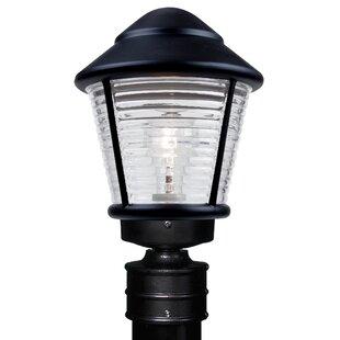 Donnie 1-Light Ribbed Face Lantern Head by Latitude Run